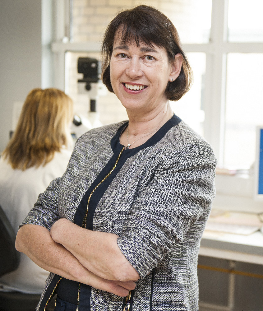 Professor Helen Enright